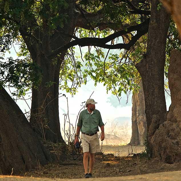 Stretch Ferreira Safaris Zimbabwe Mana Pools