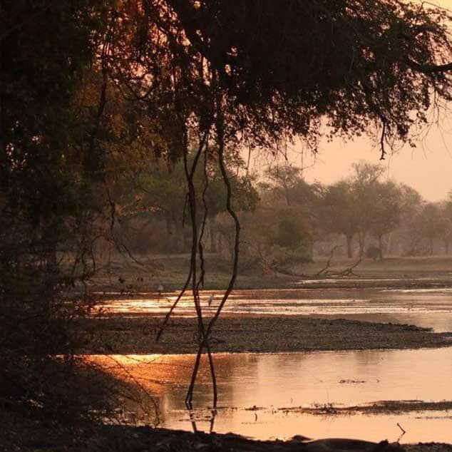 Stretch Ferreira Sunrise Zimbabwe Mana Pools